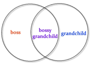 venn diagram of bossiness